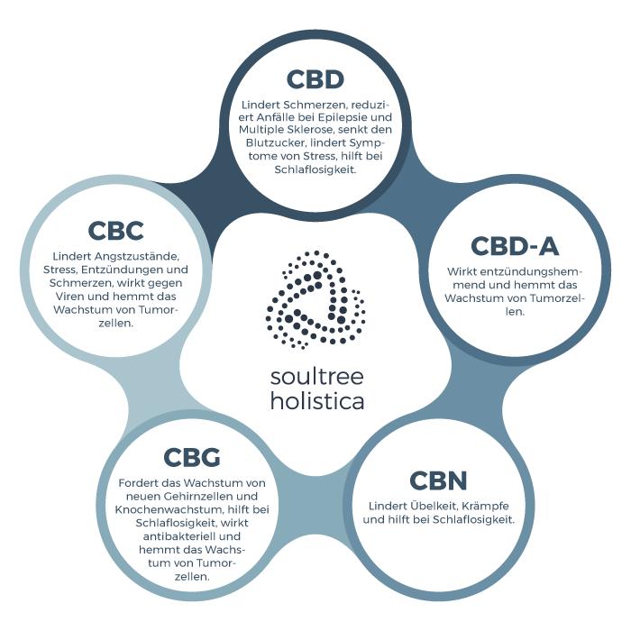 Haupt-Cannabinoide, vorhanden im natürlichen CBD Extrakt mit vollem Spektrum an Wirkstoffen